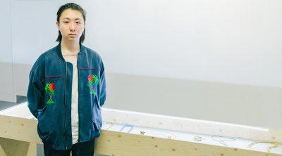 Shengyi Chen